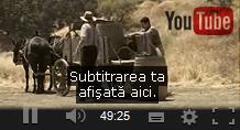 servicii-youtube